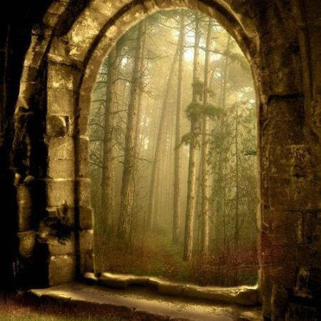 The enchanted wood portal by besttravelphotos