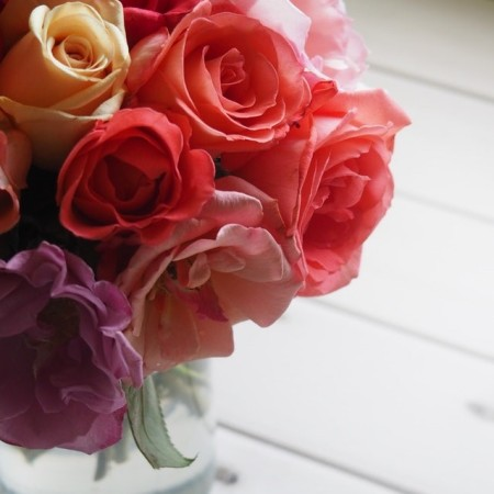 Close up of roses in different colours