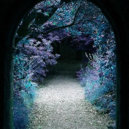 Forest Portal Hever Castle Kent England by besttravelphotos