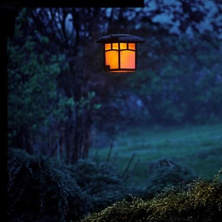 Lit lantern hanging in a garden at dusk