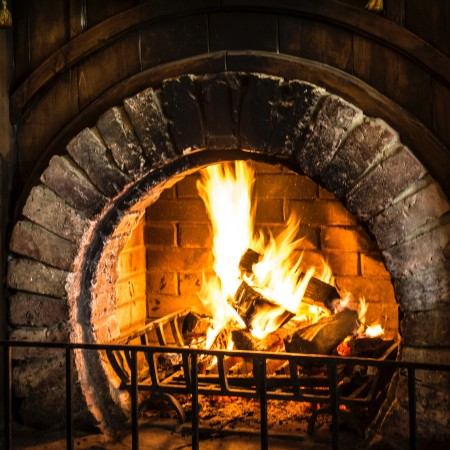 Circular fireplace with fireguard and fire